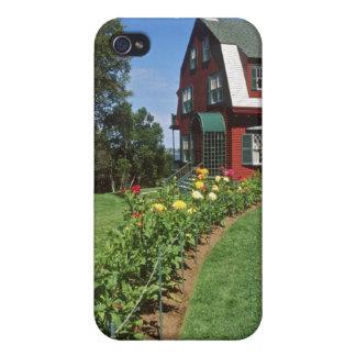 Canada, New Brunswick, Campobello Island. 2 iPhone 4 Case