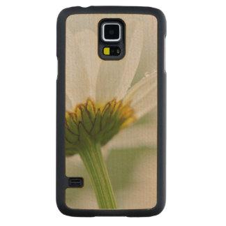 Canada, New Brunswick, Carved Maple Galaxy S5 Case