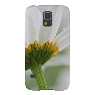 Canada, New Brunswick, Galaxy S5 Cover