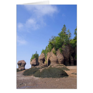 Canada, New Brunswick, Hopewell Cape, Bay of Card