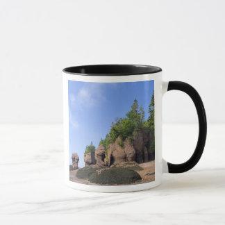 Canada, New Brunswick, Hopewell Cape, Bay of Mug