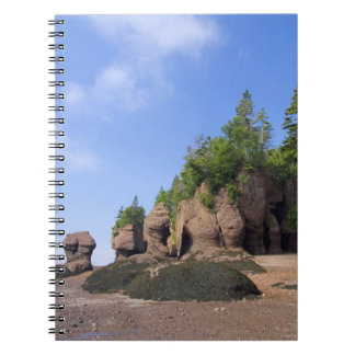 Canada, New Brunswick, Hopewell Cape, Bay of Note Book