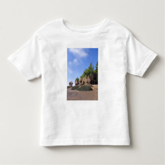 Canada, New Brunswick, Hopewell Cape, Bay of Toddler T-Shirt