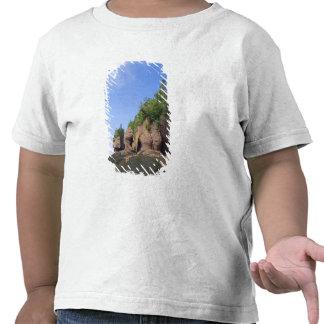 Canada, New Brunswick, Hopewell Cape, Bay of Tee Shirt