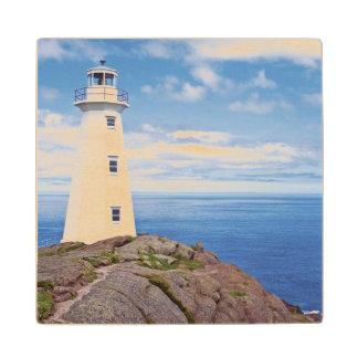 Canada, Newfoundland, Cape Spear National Wood Coaster