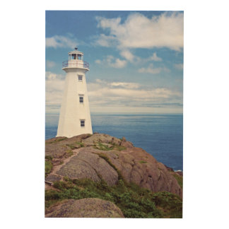 Canada, Newfoundland, Cape Spear National Wood Prints