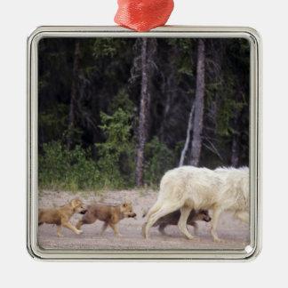 Canada, Northwest Territories, Great Slave Lake. Christmas Ornament