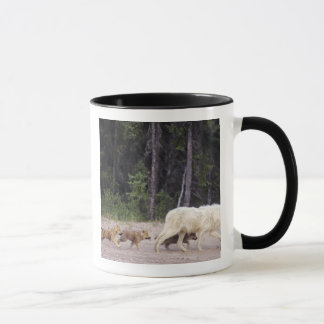 Canada, Northwest Territories, Great Slave Lake. Mug
