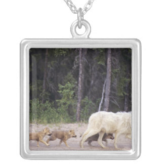 Canada, Northwest Territories, Great Slave Lake. Silver Plated Necklace