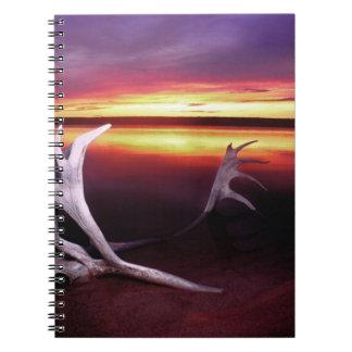 Canada, Northwest Territories, Whitefish Lake. Note Book