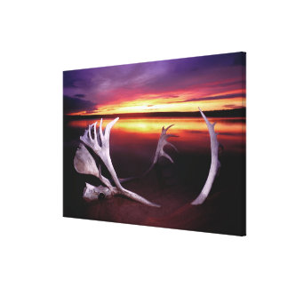 Canada, Northwest Territories, Whitefish Lake. Stretched Canvas Print