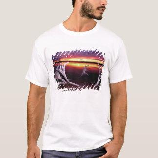Canada, Northwest Territories, Whitefish Lake. T-Shirt