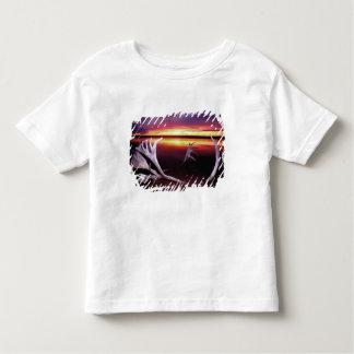 Canada, Northwest Territories, Whitefish Lake. Tee Shirts