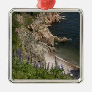 Canada, Nova Scotia, Cape Breton Island, Cabot 3 Christmas Ornament