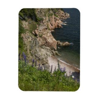 Canada, Nova Scotia, Cape Breton Island, Cabot 3 Magnet