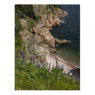 Canada, Nova Scotia, Cape Breton Island, Cabot 3 Postcard