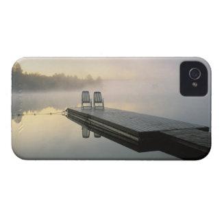 Canada, Ontario, Algonquin Provincial Park, iPhone 4 Case-Mate Cases