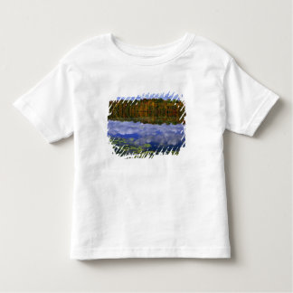 Canada, Ontario. Autumn color reflects in Park Toddler T-Shirt