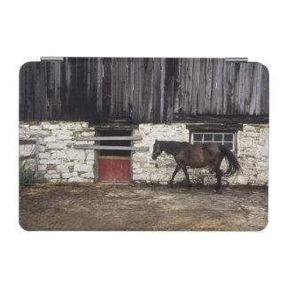 Canada: Ontario, Bruce Peninsula, Cape Chin, iPad Mini Cover