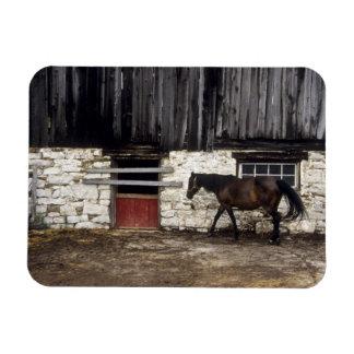 Canada: Ontario, Bruce Peninsula, Cape Chin, Rectangular Photo Magnet