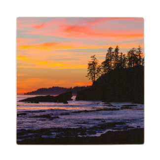 Canada, Pacific Rim National Park Reserve, West Wood Coaster
