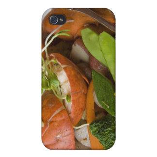 Canada, Prince Edward Island, Cover For iPhone 4