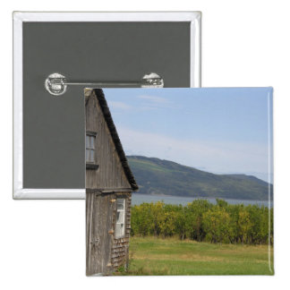 Canada,  Quebec,  L'isle-aux-Coudres, Pin