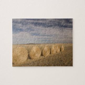 Canada, Saskatchewan, Craik: Hayrolls / Autumn Jigsaw Puzzle