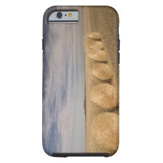 Canada, Saskatchewan, Craik: Hayrolls / Autumn Tough iPhone 6 Case