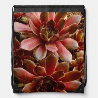 Canada, . Succulent plant Drawstring Bag