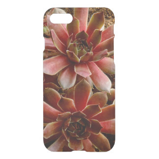 Canada, . Succulent plant iPhone 8/7 Case