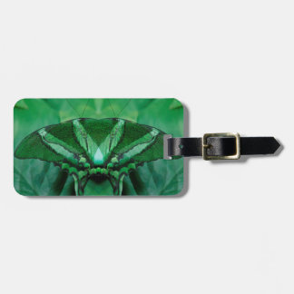 Canada, Victoria, Victoria Butterfly Gardens Luggage Tag
