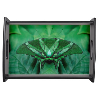 Canada, Victoria, Victoria Butterfly Gardens Serving Tray