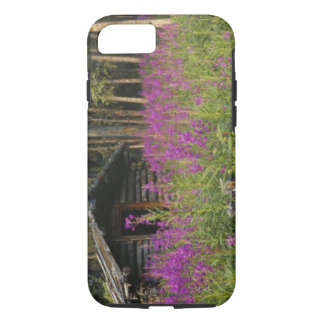 Canada, Yukon, Ross River area, Abandoned cabin iPhone 8/7 Case
