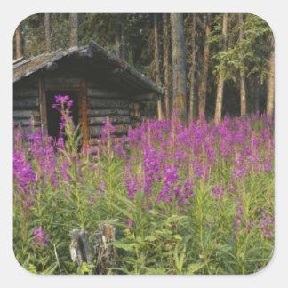 Canada, Yukon, Ross River area, Abandoned cabin Square Sticker