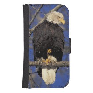 Canada, Yukon Territory, Kluane National Park. 2 Samsung S4 Wallet Case