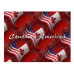 Canadian-American Waving Flag