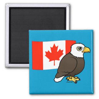 Canadian Bald Eagle Square Magnet