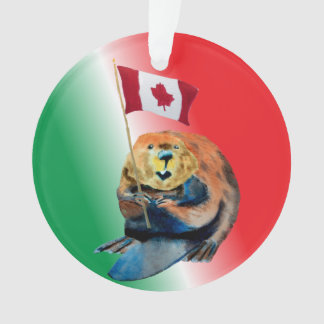 Canadian Beaver & Flag