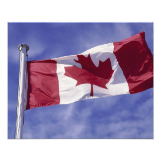 Canadian flag photo art