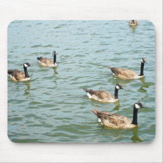 Canadian geese mouse mat