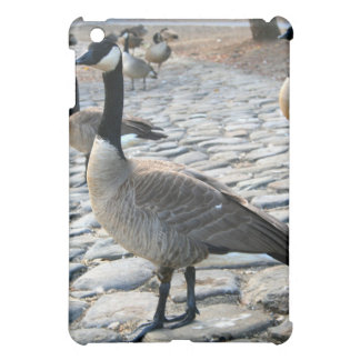Canadian Geese Speck Case iPad Mini Covers