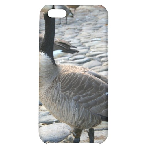 Canadian Geese Speck Case iPhone 5C Cover