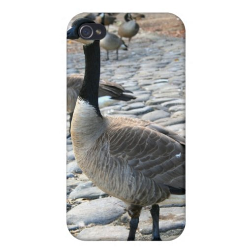 Canadian Geese Speck Case Cover For iPhone 4