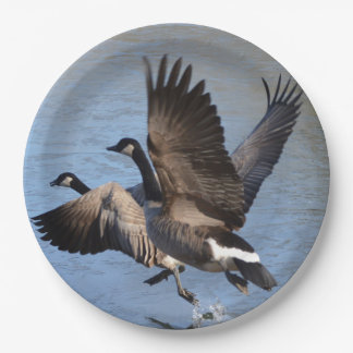 Canadian Geese Taking Flight Paper Plate