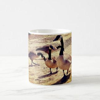 Canadian Geese @ Watson Lake Coffee Mug