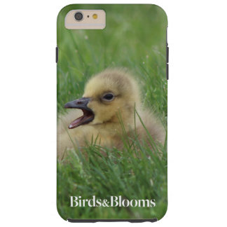 Canadian Goose Chick Tough iPhone 6 Plus Case