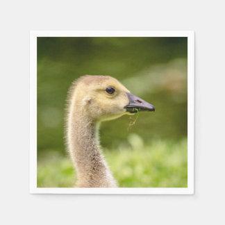 Canadian Goose (Gosling) Disposable Napkin