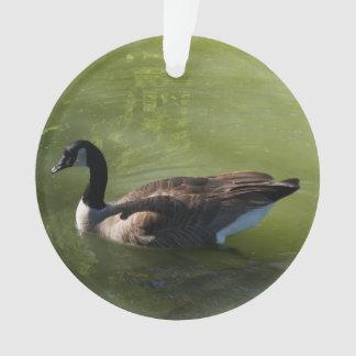 Canadian Goose Ornament