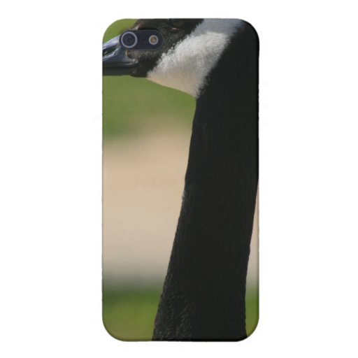 Canadian Goose Speck Case iPhone 5 Cases
